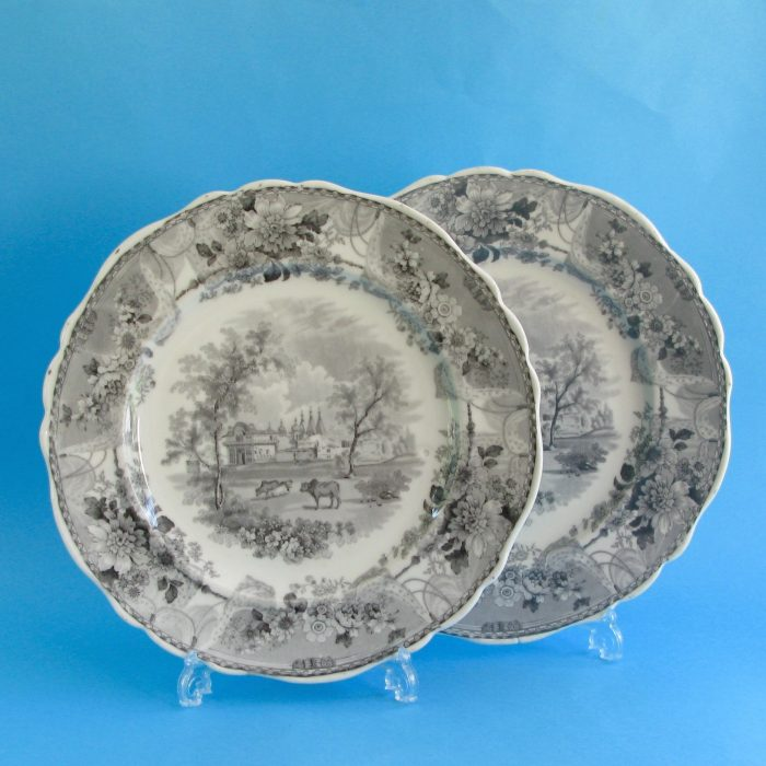 Item No. F62 – Pair Chamberlain Worcester plates